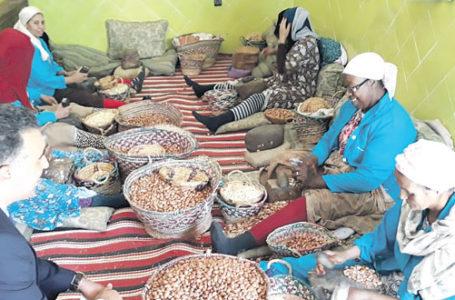 Marrakech-Safi: Soutien aux coopératives impactées par le Covid